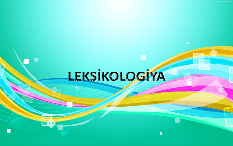 Leksikologiya. Sözün leksik və qrammatik mənası.