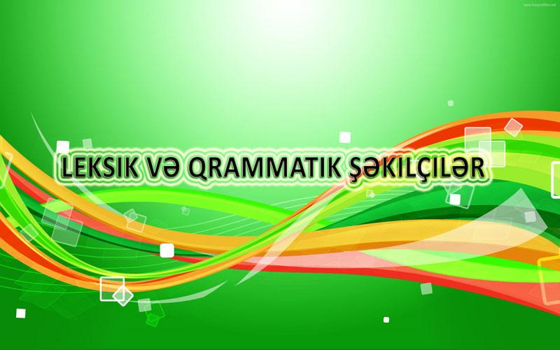 Leksik və qrammatik şəkilçilər